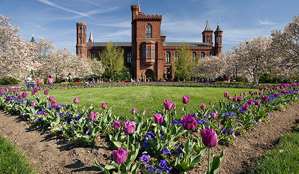 Smithsonian Institution Fellowships